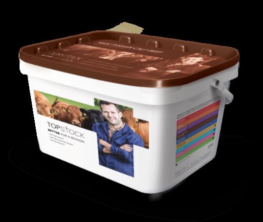 topstock-Maxi-Thriver-Calf-Beef